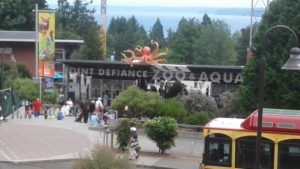 Point Defiance. You'll never find a greater hive of cute, fuzzy animals with big sharp teeth.
